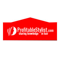 Profitable Stylist